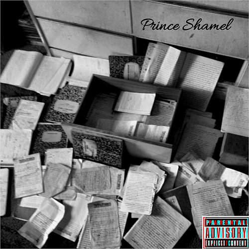 Take Alot by Prince Shamel