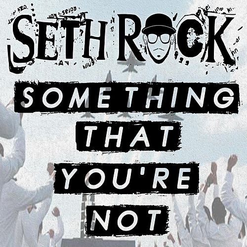 Something That You're Not by Seth Rock