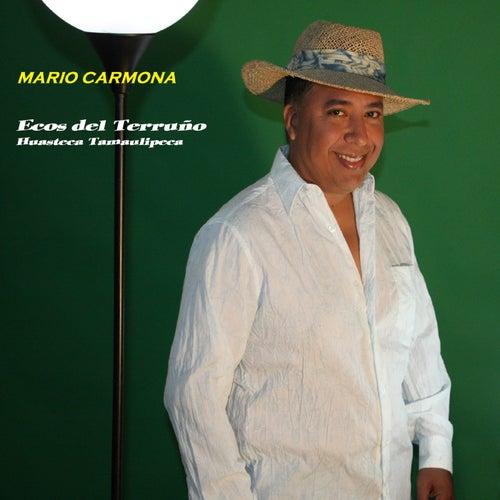 Ecos Del Terruño Huasteca Tamaulipeca de Mario Carmona