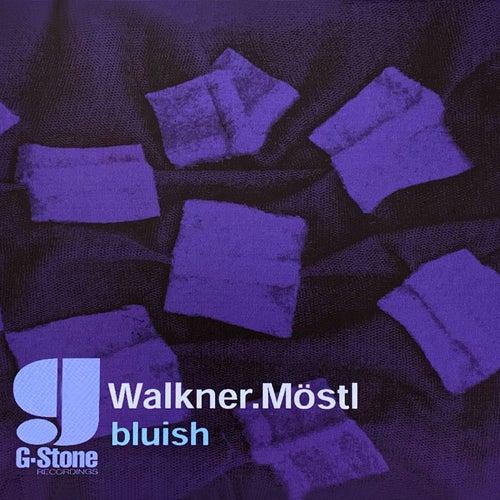 Bluish von Walkner.Moestl