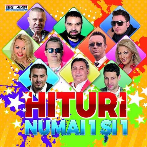 Hit-Uri Numai 1 Si 1 de Various Artists
