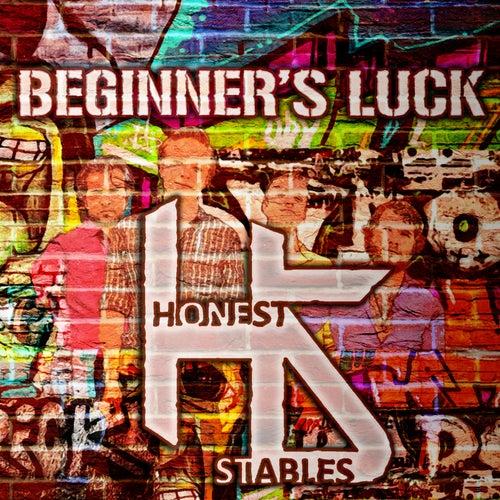 Beginner's Luck by Honest Stables