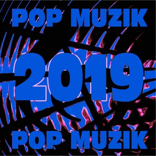 Pop Muzik 2019 von Various Artists