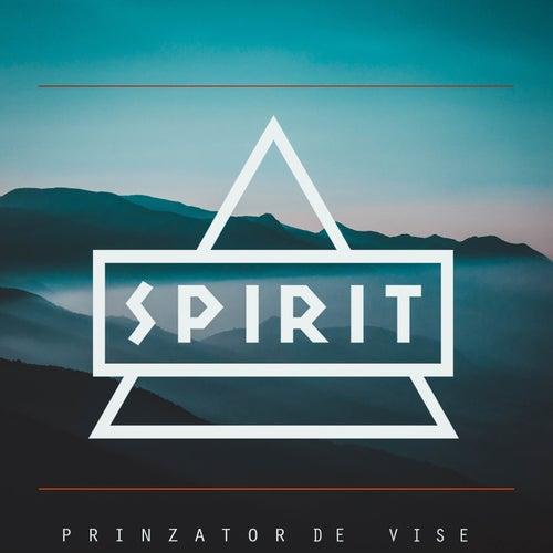 Prinzator de vise by Spirit