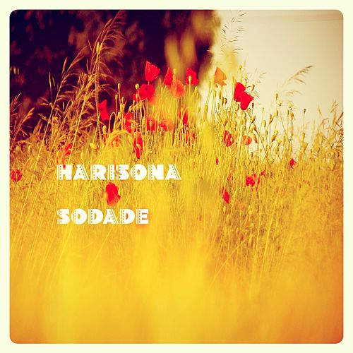 Sodade (Acoustic Version) de Harisona