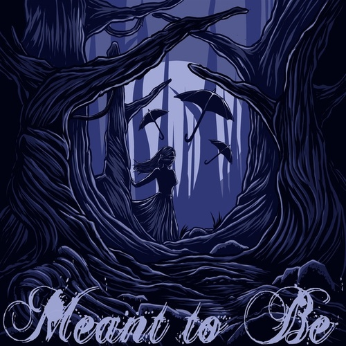 Meant to Be by Seth Rock