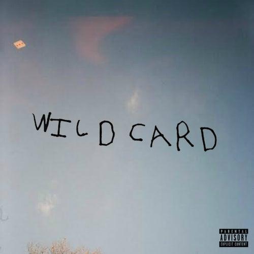 Wild Card de ZelooperZ