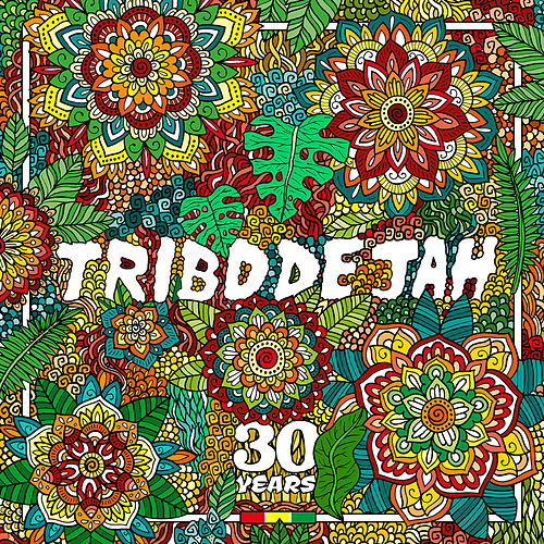 Come To The Vibe de Tribo de Jah