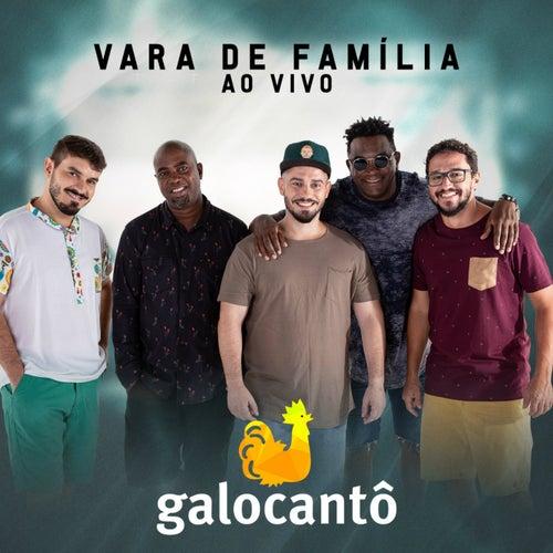 Vara de Família (Ao Vivo) de Galocantô