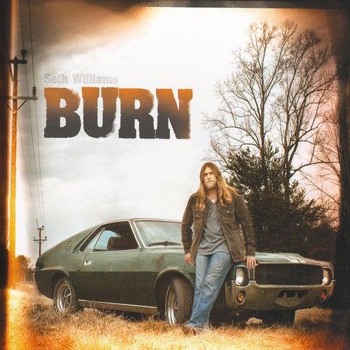 Burn by Seth Williams