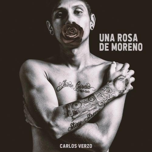 Una Rosa de Moreno by Carlos Verzo