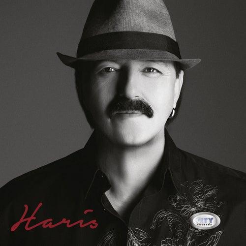 Haris de Haris Dzinovic