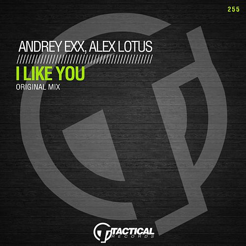 I Like You von Andrey Exx