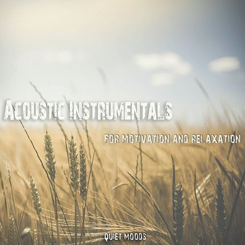 Acoustic Instrumentals (For Motivation and Relaxation) de Various Artists