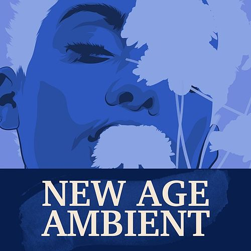 New Age Ambient de Various Artists
