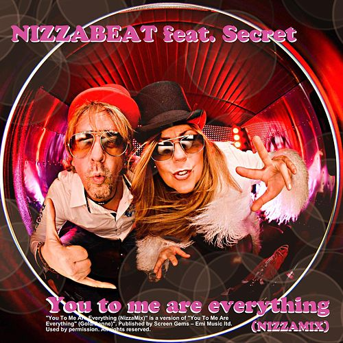 You to me are everything (feat. Secret) by Nizzabeat