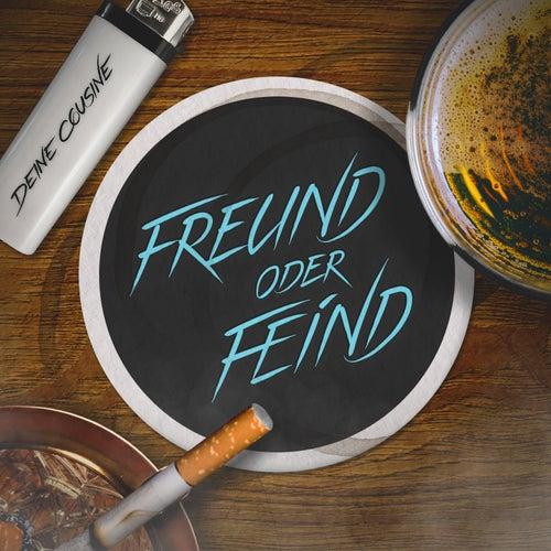 Freund oder Feind by Deine Cousine