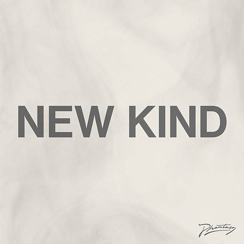 New Kind (Remixes) by Gabe Gurnsey
