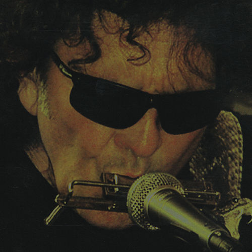 The Shine by Tony Joe White