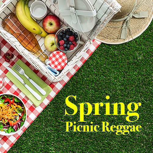 Spring Picnic Reggae by Various Artists