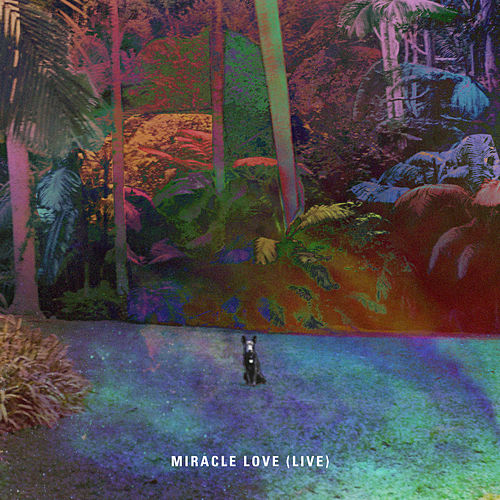 Miracle Love (Live) by Matt Corby