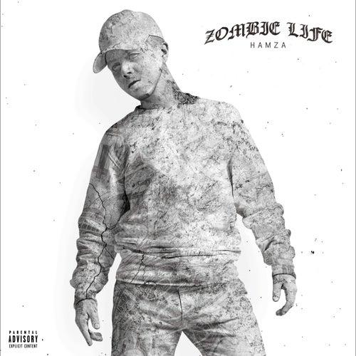 Zombie Life de Hamza