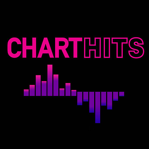 Chart Hits von Various Artists
