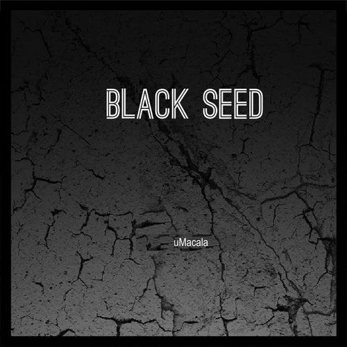 Umacala de Black Seed