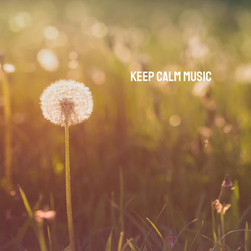 Keep Calm Music by Various Artists