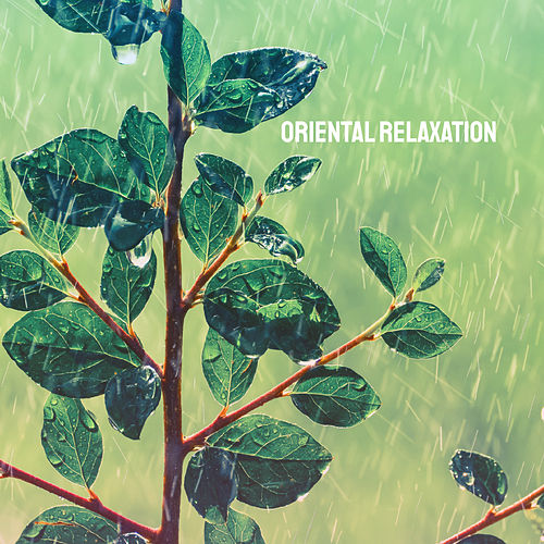 Oriental Relaxation by Various Artists