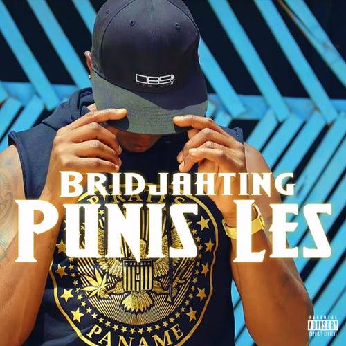 Punis les de Bridjahting