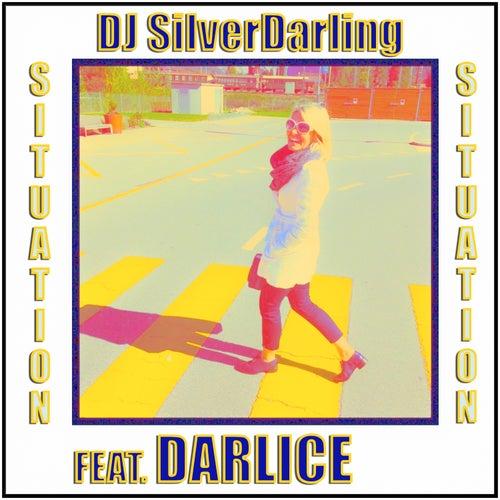 Situation de DJ SilverDarling