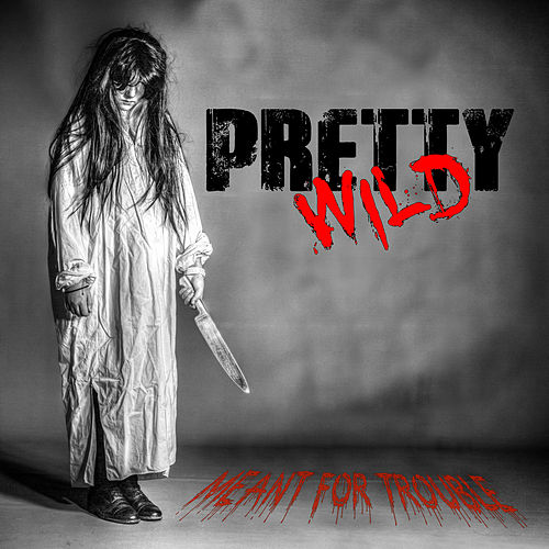 Meant for Trouble by Pretty Wild
