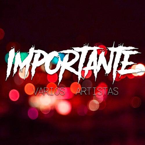 Importante de Various Artists