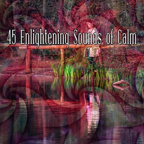 45 Enlightening Sounds of Calm de Meditación Música Ambiente