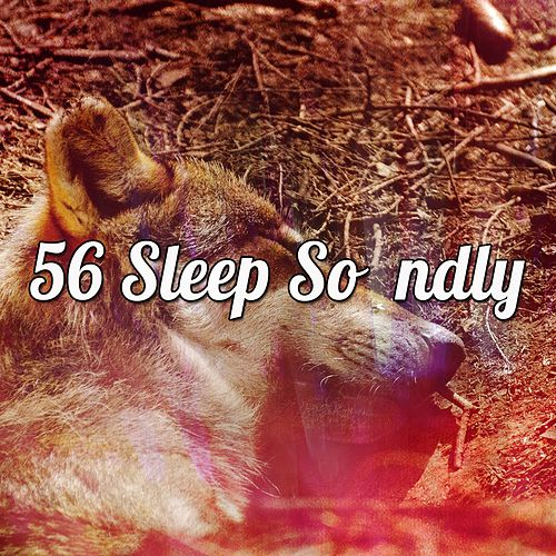 56 Sleep Soundly de Ocean Sounds Collection (1)