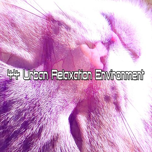 44 Urban Relaxation Environment de Ocean Sounds Collection (1)