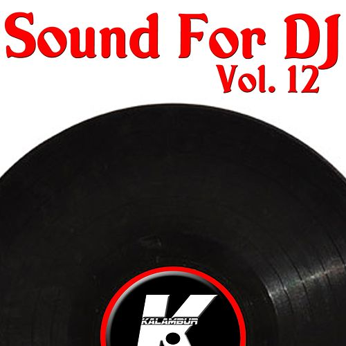 Sound For DJ Vol 12 de Various Artists