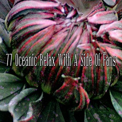 77 Oceanic Relax with a Side of Fans de Water Sound Natural White Noise