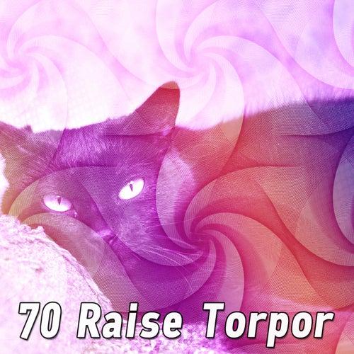 70 Raise Torpor by S.P.A
