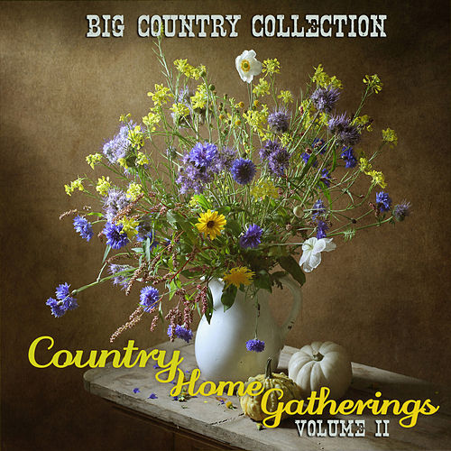 Big Country Collection: Country Home Gatherings, Vol. 2 by Various Artists