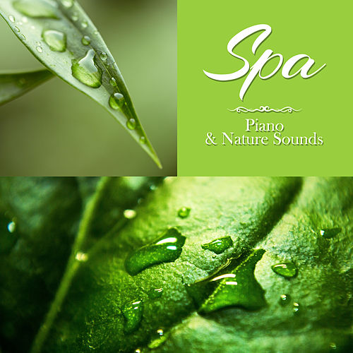 SPA – Piano & Nature Sounds: Soft Piano Jazz Atmosphere for Relaxing Massage by Pure Spa Massage Music