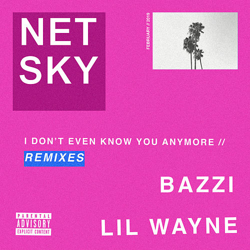 I Don't Even Know You Anymore (Remixes) von Netsky