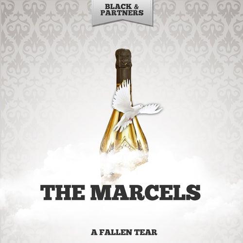 A Fallen Tear de The Marcels