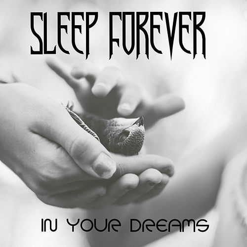 In Your Dreams de Sleep Forever
