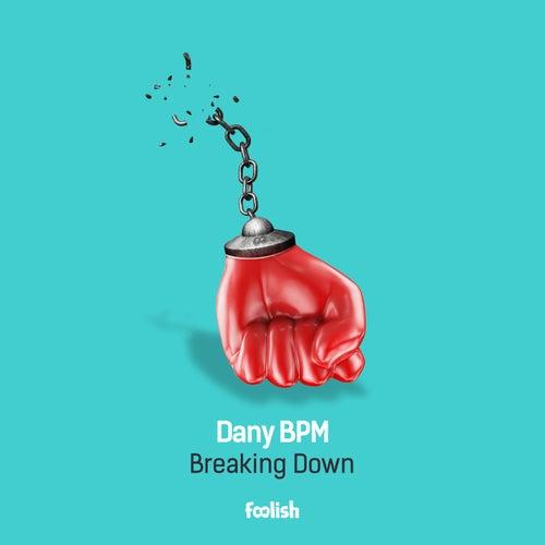 Breaking Down (Radio Edit) by Dany BPM