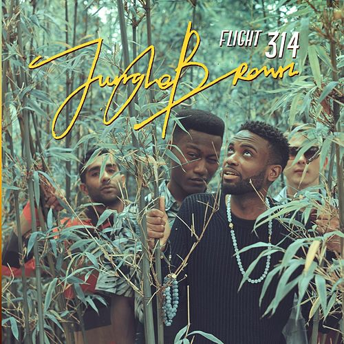 Flight 314 by Jungle Brown