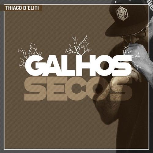 Galhos Secos by Thiago D' Eliti