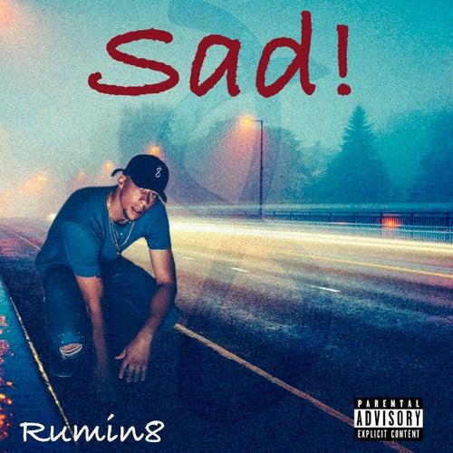 Sad! by Rumin8