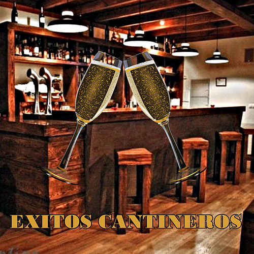 Exitos Cantineros by Various Artists